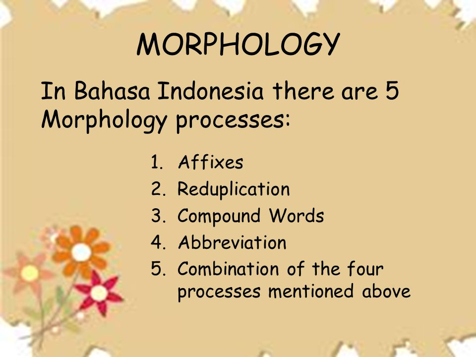 1.Affixes 2.Reduplication 3.Compound Words 4.Abbreviation 5.Combination of the four processes mentioned above MORPHOLOGY In Bahasa Indonesia there are 5 Morphology processes: