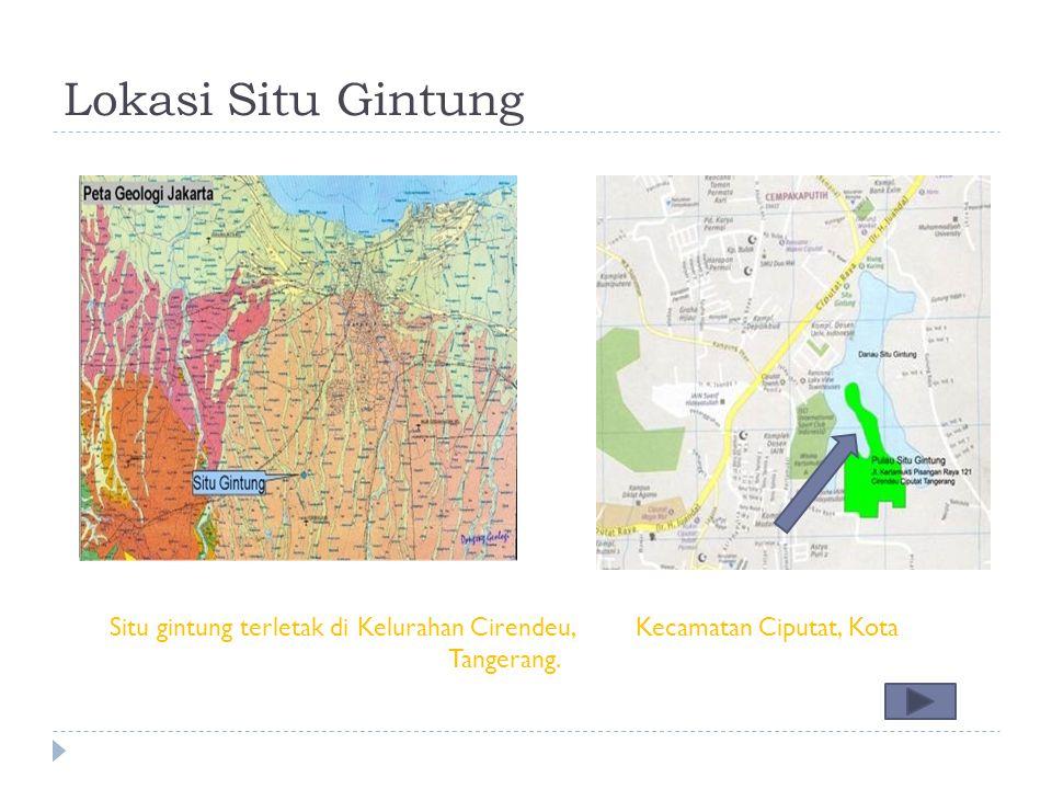 Lokasi Situ Gintung Situ gintung terletak di Kelurahan Cirendeu,Kecamatan Ciputat, Kota Tangerang.
