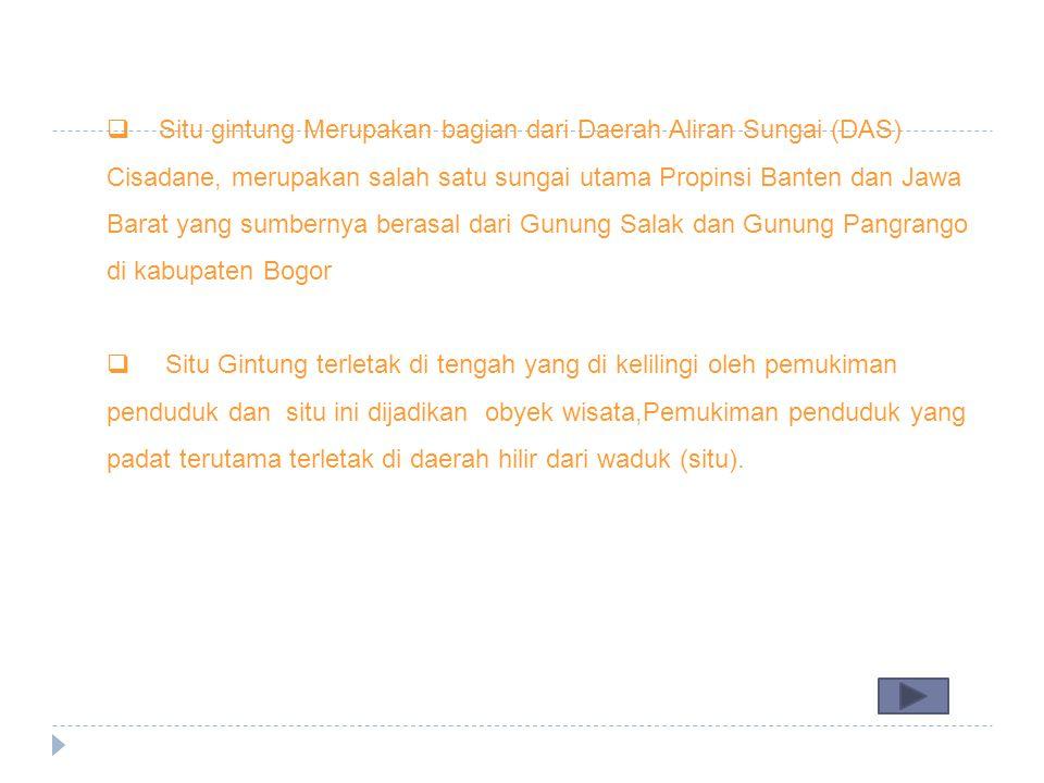  Situ gintung Merupakan bagian dari Daerah Aliran Sungai (DAS) Cisadane, merupakan salah satu sungai utama Propinsi Banten dan Jawa Barat yang sumber