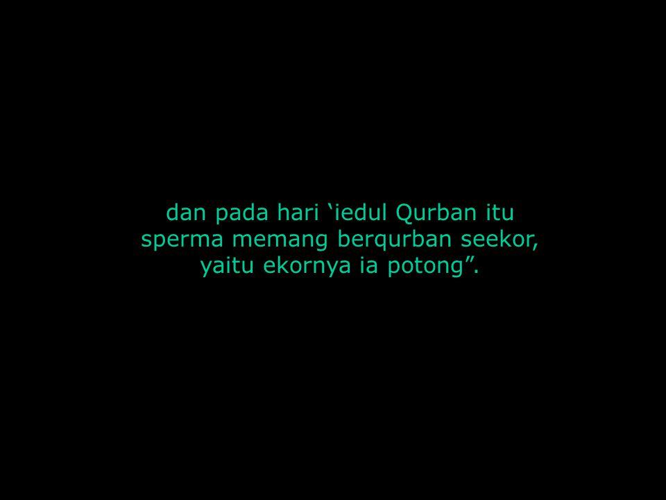 "dan pada hari 'iedul Qurban itu sperma memang berqurban seekor, yaitu ekornya ia potong""."