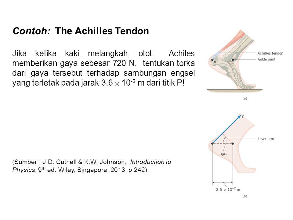 Contoh: The Achilles Tendon Jika ketika kaki melangkah, otot Achiles memberikan gaya sebesar 720 N, tentukan torka dari gaya tersebut terhadap sambung