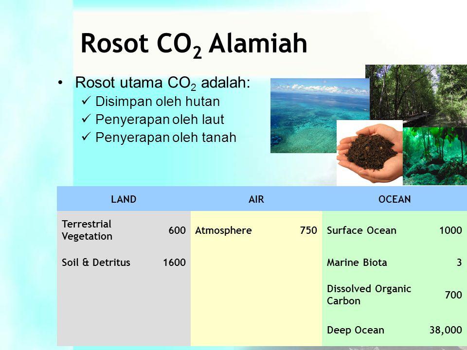 •Rosot utama CO 2 adalah:  Disimpan oleh hutan  Penyerapan oleh laut  Penyerapan oleh tanah LANDAIROCEAN Terrestrial Vegetation 600Atmosphere750Surface Ocean1000 Soil & Detritus1600 Marine Biota3 Dissolved Organic Carbon 700 Deep Ocean38,000 Rosot CO 2 Alamiah