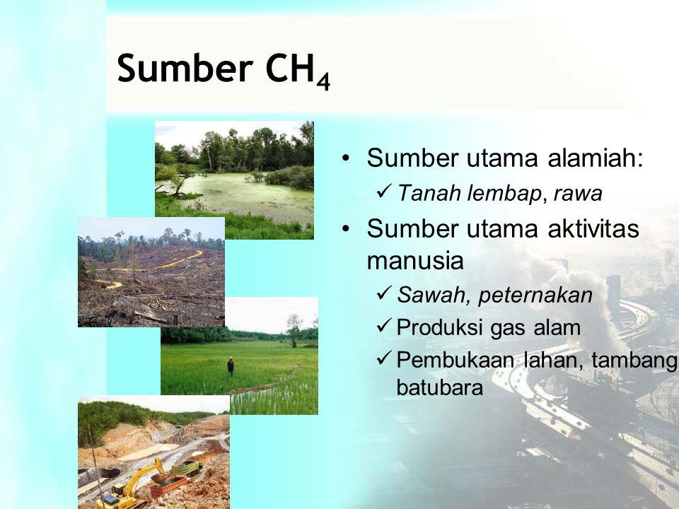 Sumber CH 4 •Sumber utama alamiah:  Tanah lembap, rawa •Sumber utama aktivitas manusia  Sawah, peternakan  Produksi gas alam  Pembukaan lahan, tambang batubara
