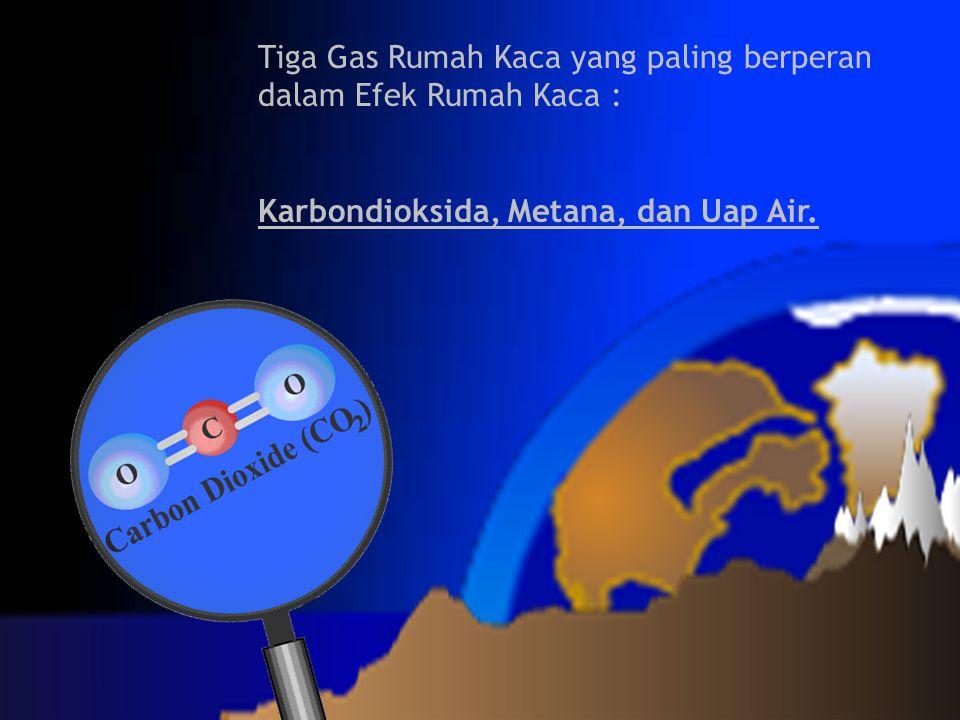 Tiga Gas Rumah Kaca yang paling berperan dalam Efek Rumah Kaca : Karbondioksida, Metana, dan Uap Air.