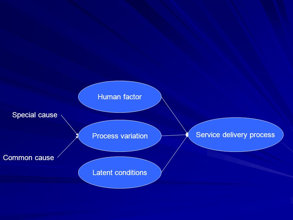 Service delivery process Human factor Process variation Latent conditions Special cause Common cause