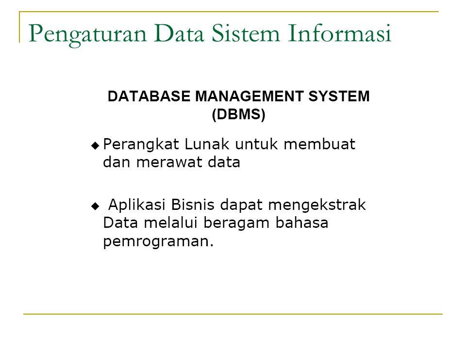 Pengaturan Data Sistem Informasi