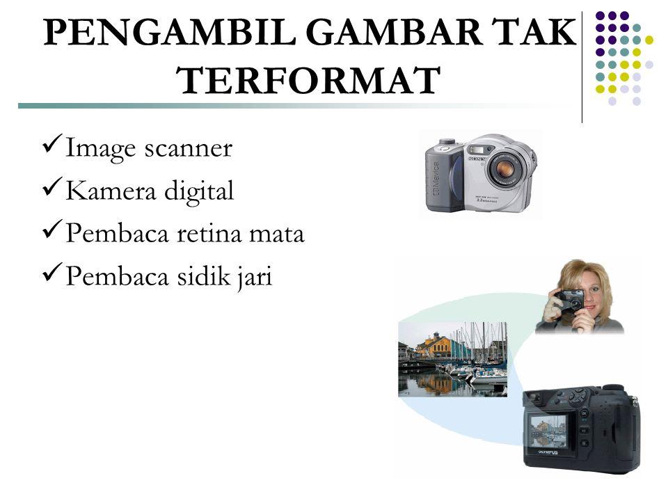 PENGAMBIL GAMBAR TAK TERFORMAT  Image scanner  Kamera digital  Pembaca retina mata  Pembaca sidik jari