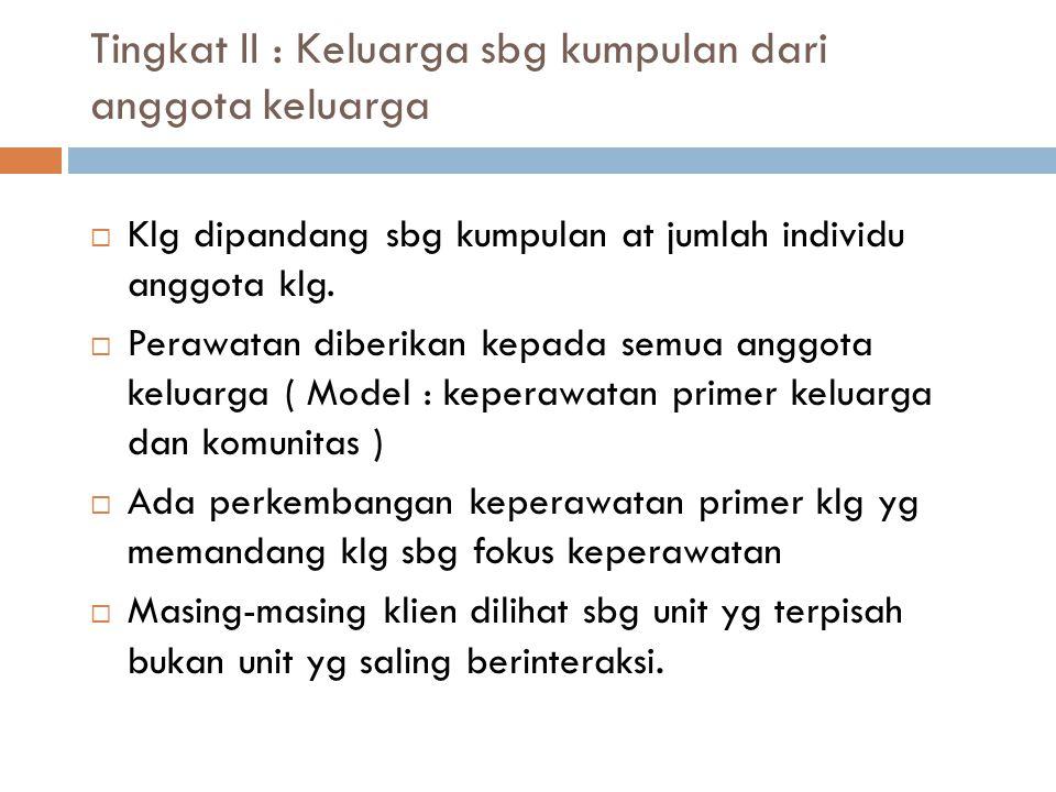 Tingkat II : Keluarga sbg kumpulan dari anggota keluarga  Klg dipandang sbg kumpulan at jumlah individu anggota klg.  Perawatan diberikan kepada sem