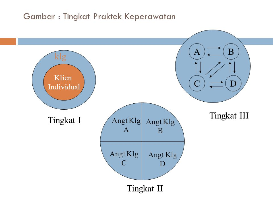 Gambar : Tingkat Praktek Keperawatan Klien Individual klg Tingkat I Angt Klg A Angt Klg B Angt Klg C Angt Klg D Tingkat II A CD B Tingkat III