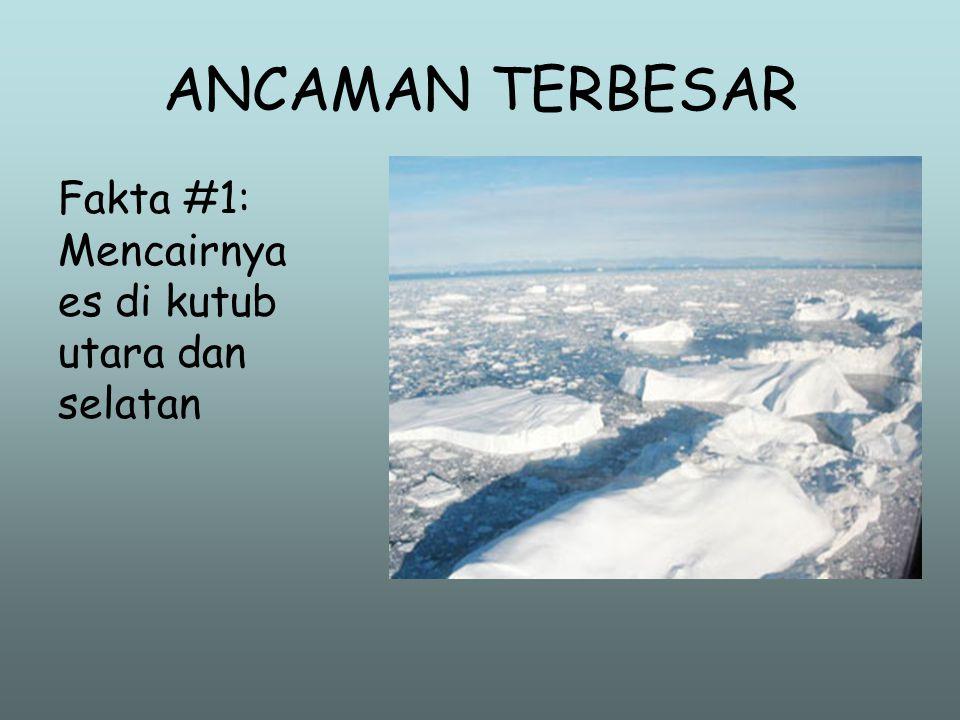 Efek Pemanasan •S•Sebuah molekul metan menghasilkan efek pemanasan 23 kali dari molekul CO 2. •M•Molekul NO menghasilkan efek pemanasan 300 kali dari