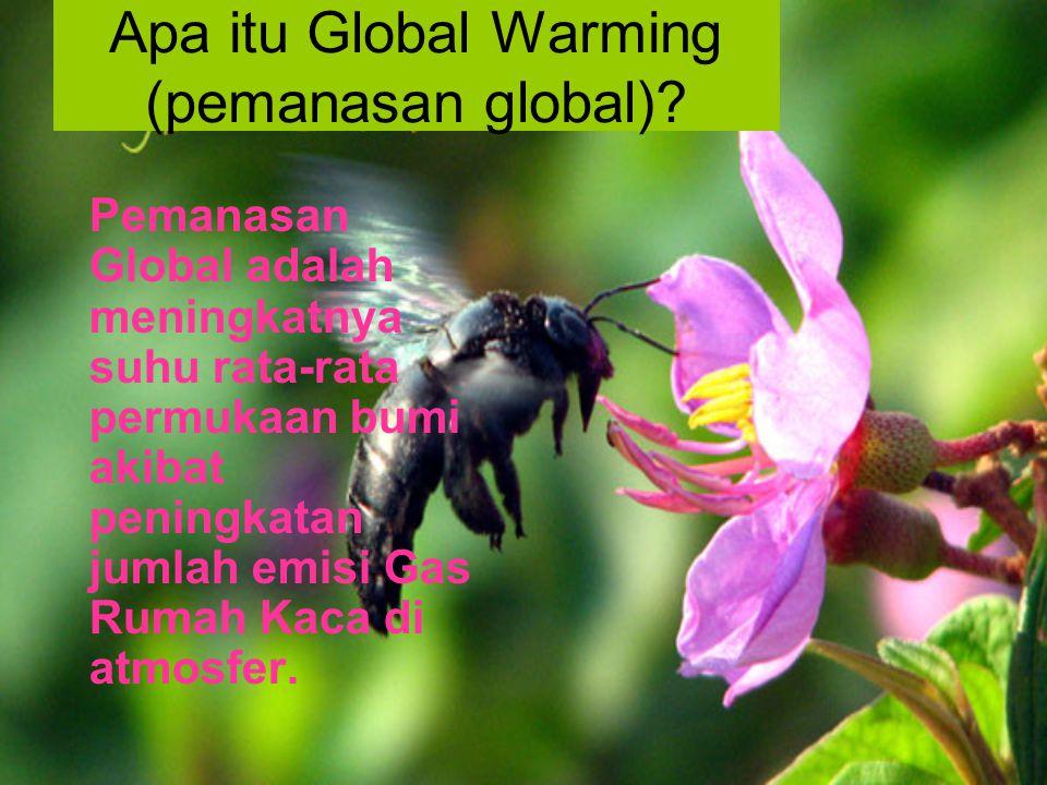 Akibat Kerusakan Alam Apa dan Bagaimana Global Warming Mencam kita