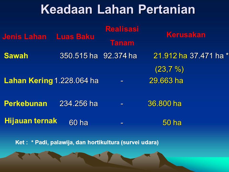 Luas Baku Realisasi Tanam Kerusakan 350.515 ha 350.515 ha 92.374 ha 21.912 ha 21.912 ha 37.471 ha * 37.471 ha * (23,7 %) Jenis Lahan Sawah Lahan Kering Perkebunan 1.228.064 ha 1.228.064 ha 234.256 ha 36.800 ha 36.800 ha 29.663 ha Ket : * Padi, palawija, dan hortikultura (survei udara) - - Hijauan ternak Keadaan Lahan Pertanian 60 ha 50 ha -