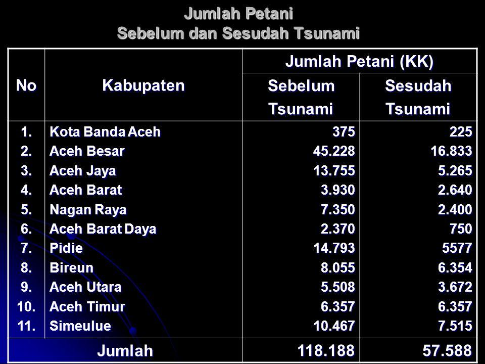 Jumlah Petani Sebelum dan Sesudah Tsunami NoKabupaten Jumlah Petani (KK) SebelumTsunamiSesudahTsunami 1.2.3.4.5.6.7.8.9.10.11.