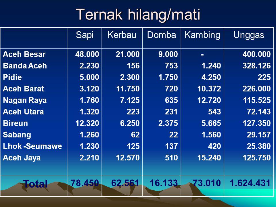 Ternak hilang/mati SapiKerbauDombaKambingUnggas Aceh Besar Banda Aceh Pidie Aceh Barat Nagan Raya Aceh Utara Bireun Sabang Lhok -Seumawe Aceh Jaya 48.000 2.230 5.000 3.120 1.760 1.320 12.320 1.260 1.230 2.210 21.000 156 2.300 11.750 7.125 223 6.250 62 125 12.570 9.000 753 1.750 720 635 231 2.375 22 137 510 - 1.240 4.250 10.372 12.720 543 5.665 1.560 420 15.240 400.000 328.126 225 226.000 115.525 72.143 127.350 29.157 25.380 125.750 Total 78.45062.56116.13373.0101.624.431