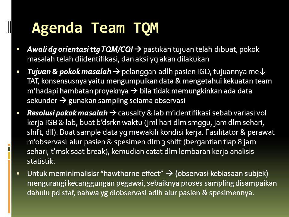 Agenda Team TQM  Awali dg orientasi ttg TQM/CQI  pastikan tujuan telah dibuat, pokok masalah telah diidentifikasi, dan aksi yg akan dilakukan  Tuju