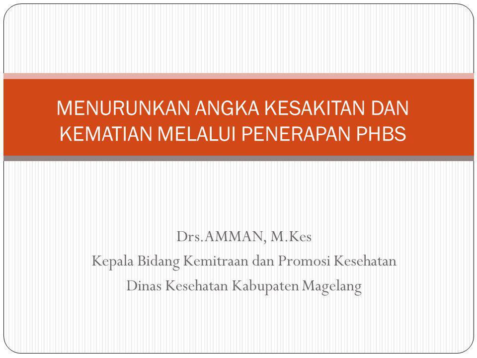 Drs.AMMAN, M.Kes Kepala Bidang Kemitraan dan Promosi Kesehatan Dinas Kesehatan Kabupaten Magelang MENURUNKAN ANGKA KESAKITAN DAN KEMATIAN MELALUI PENE