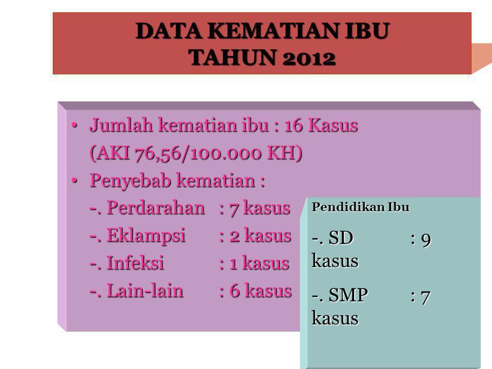 DATA KEMATIAN IBU TAHUN 2012 • Jumlah kematian ibu : 16 Kasus (AKI 76,56/100.000 KH) • Penyebab kematian : -. Perdarahan : 7 kasus -. Eklampsi : 2 kas
