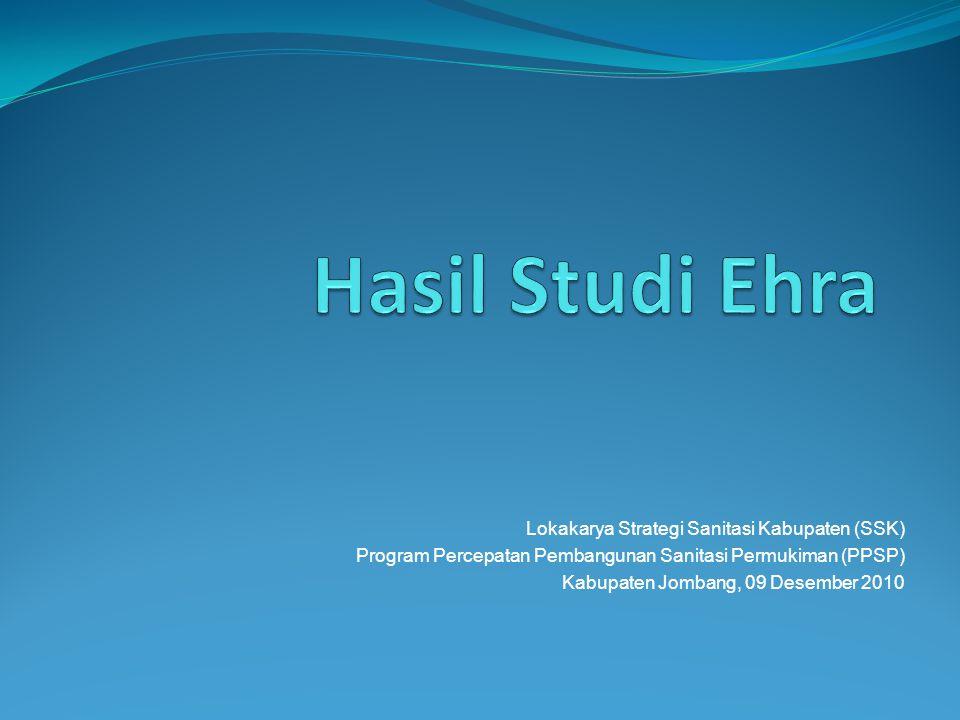 APA ITU STUDY EHRA.