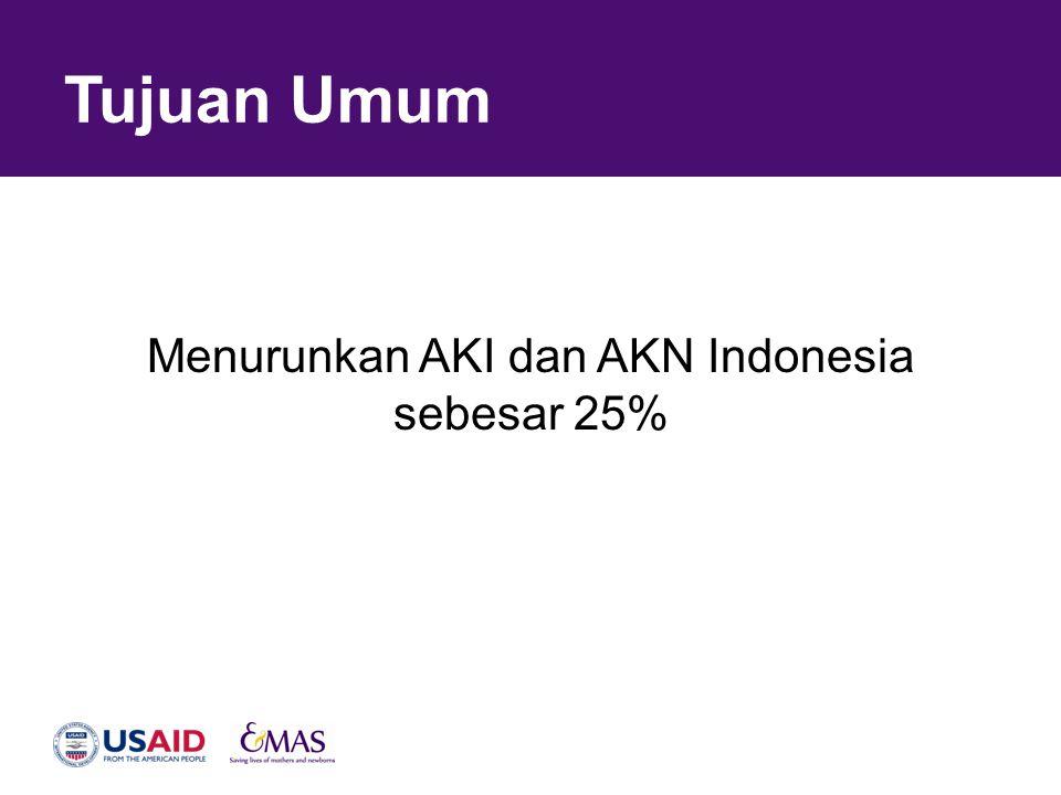 Tujuan Umum Menurunkan AKI dan AKN Indonesia sebesar 25%