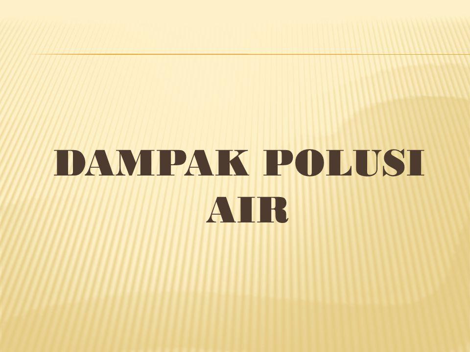 DAMPAK POLUSI AIR