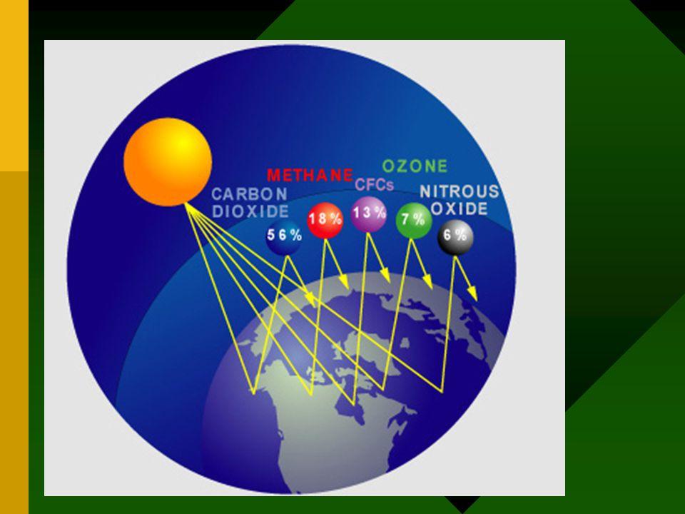 Efek pemanasan global •Molekul metana menghasilkan efek pemanasan 23 kali dari molekul CO2.