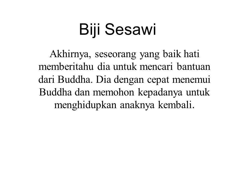Biji Sesawi Akhirnya, seseorang yang baik hati memberitahu dia untuk mencari bantuan dari Buddha.