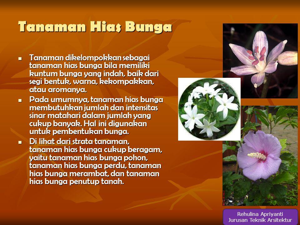 Tanaman Hias Bunga  Tanaman dikelompokkan sebagai tanaman hias bunga bila memiliki kuntum bunga yang indah, baik dari segi bentuk, warna, kekompakkan, atau aromanya.