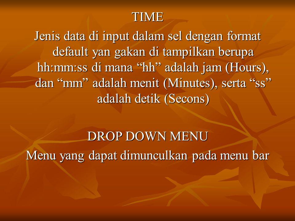 """TIME Jenis data di input dalam sel dengan format default yan gakan di tampilkan berupa hh:mm:ss di mana """"hh"""" adalah jam (Hours), dan """"mm"""" adalah menit"""