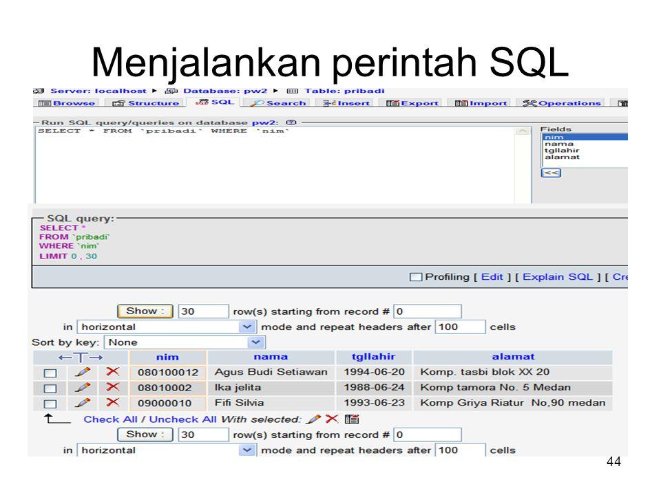 44 Menjalankan perintah SQL
