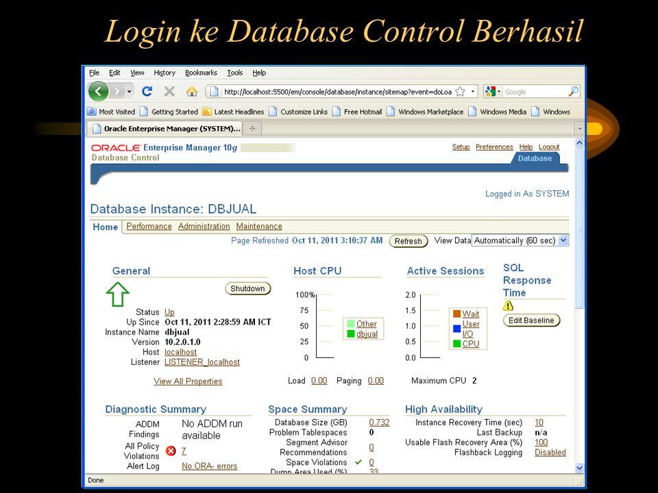 Login ke Database Control Berhasil