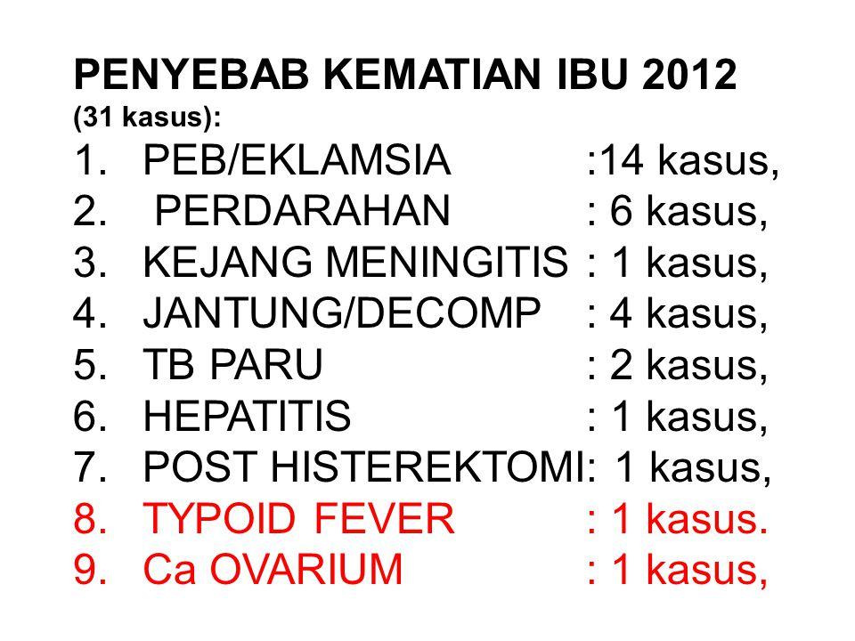 PENYEBAB KEMATIAN IBU 2012 (31 kasus): 1.PEB/EKLAMSIA:14 kasus, 2. PERDARAHAN: 6 kasus, 3.KEJANG MENINGITIS: 1 kasus, 4.JANTUNG/DECOMP: 4 kasus, 5.TB