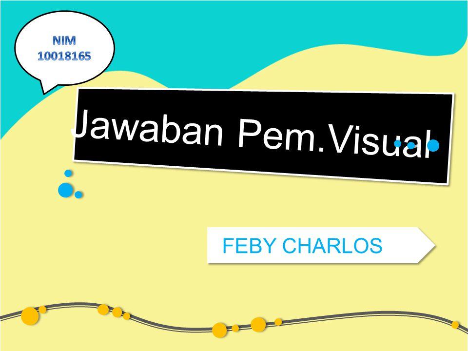 Jawaban Pem.Visual FEBY CHARLOS