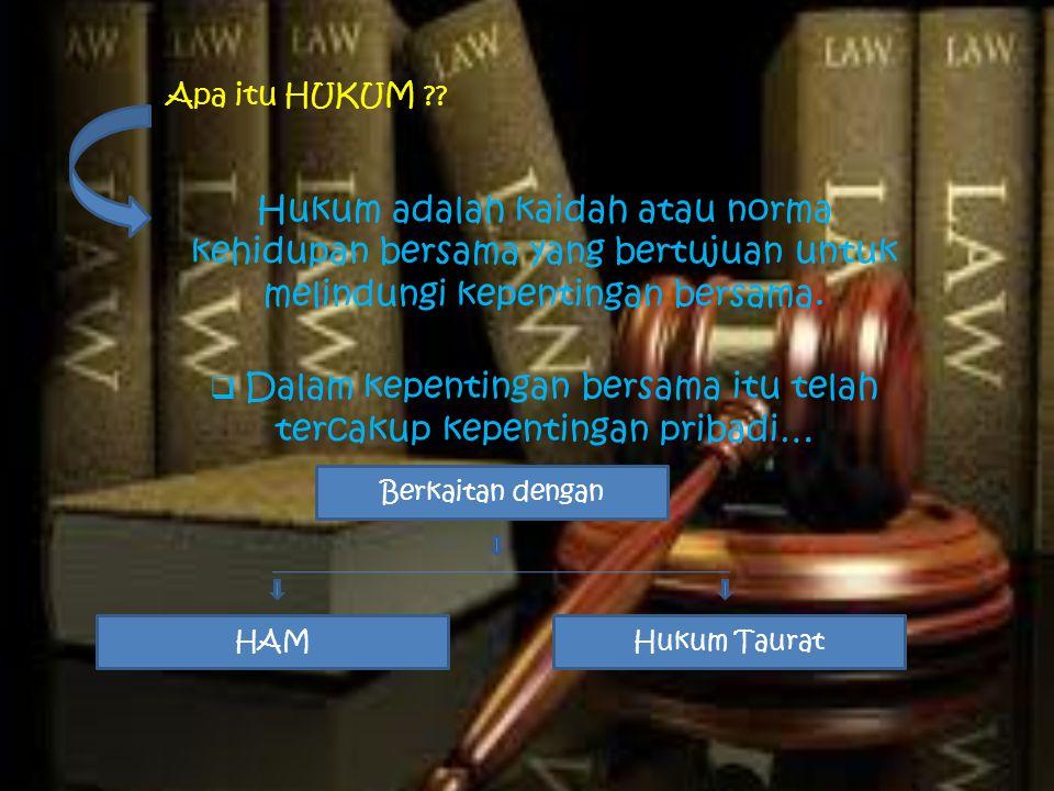 Apa itu HAM (Hak Asasi Manusia) ?.