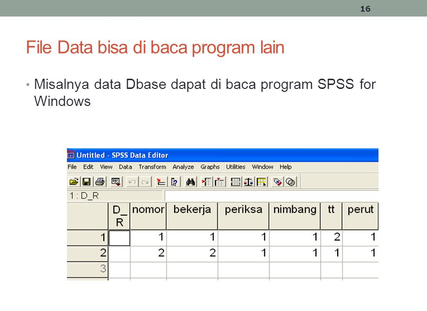 File Data bisa di baca program lain • Misalnya data Dbase dapat di baca program SPSS for Windows 16