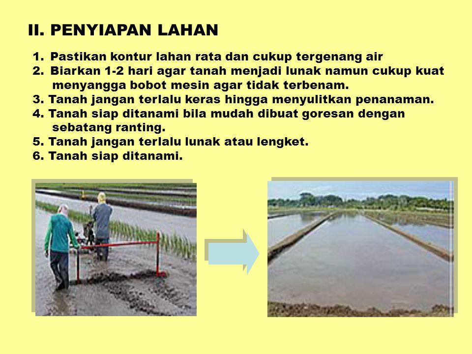 II. PENYIAPAN LAHAN 1.Pastikan kontur lahan rata dan cukup tergenang air 2.Biarkan 1-2 hari agar tanah menjadi lunak namun cukup kuat menyangga bobot