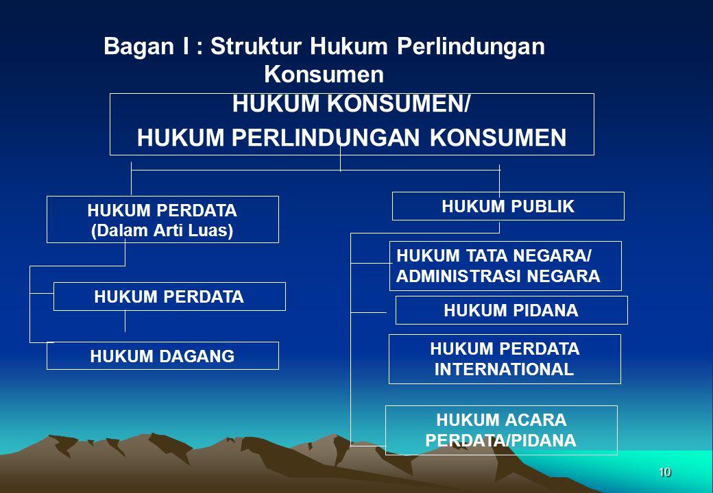 10 Bagan I : Struktur Hukum Perlindungan Konsumen HUKUM KONSUMEN/ HUKUM PERLINDUNGAN KONSUMEN HUKUM PERDATA (Dalam Arti Luas) HUKUM PERDATA HUKUM DAGA