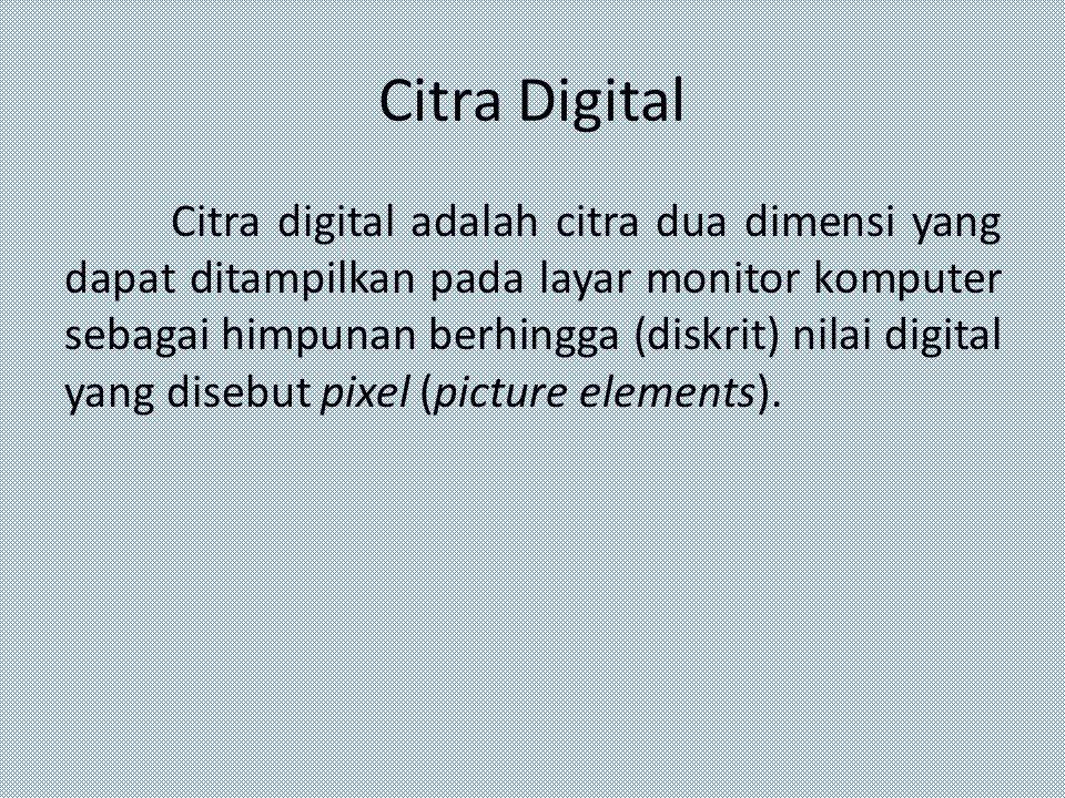 Citra Digital Citra digital adalah citra dua dimensi yang dapat ditampilkan pada layar monitor komputer sebagai himpunan berhingga (diskrit) nilai dig