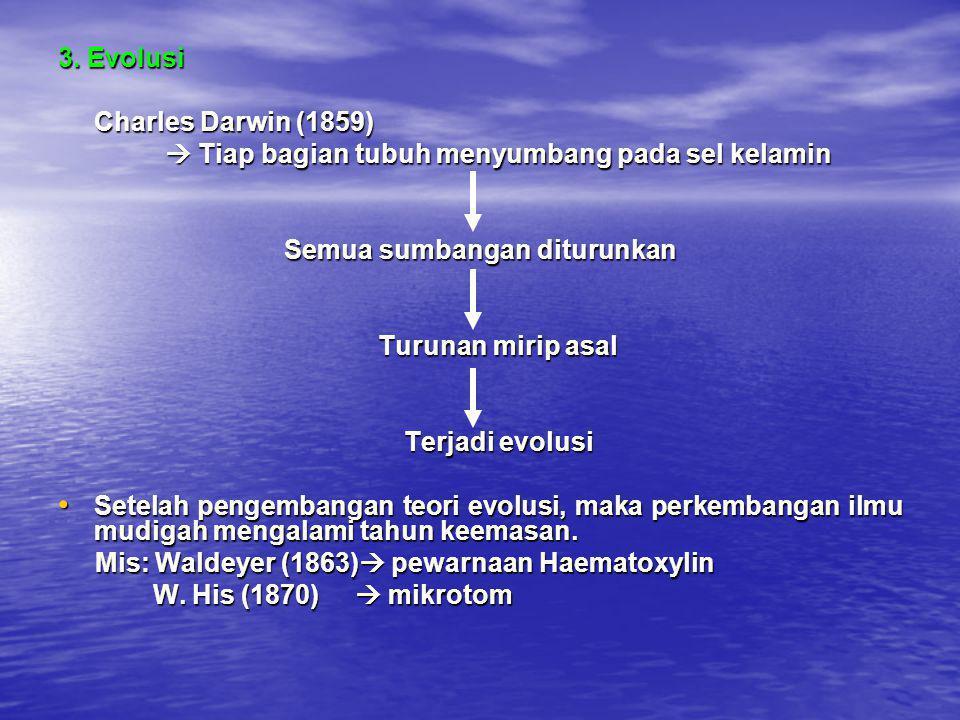 3. Evolusi Charles Darwin (1859)  Tiap bagian tubuh menyumbang pada sel kelamin Semua sumbangan diturunkan Turunan mirip asal Terjadi evolusi • Setel