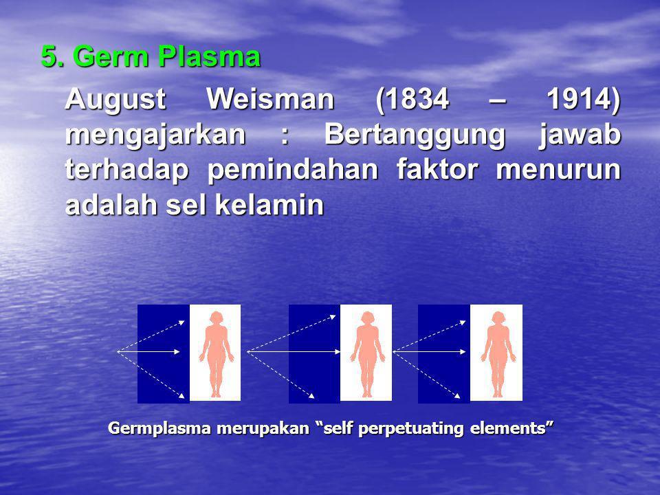 5. Germ Plasma August Weisman (1834 – 1914) mengajarkan : Bertanggung jawab terhadap pemindahan faktor menurun adalah sel kelamin Germplasma merupakan