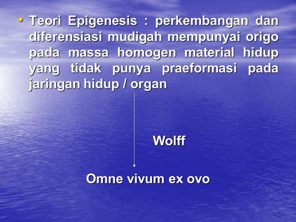 • Teori Epigenesis : perkembangan dan diferensiasi mudigah mempunyai origo pada massa homogen material hidup yang tidak punya praeformasi pada jaringa