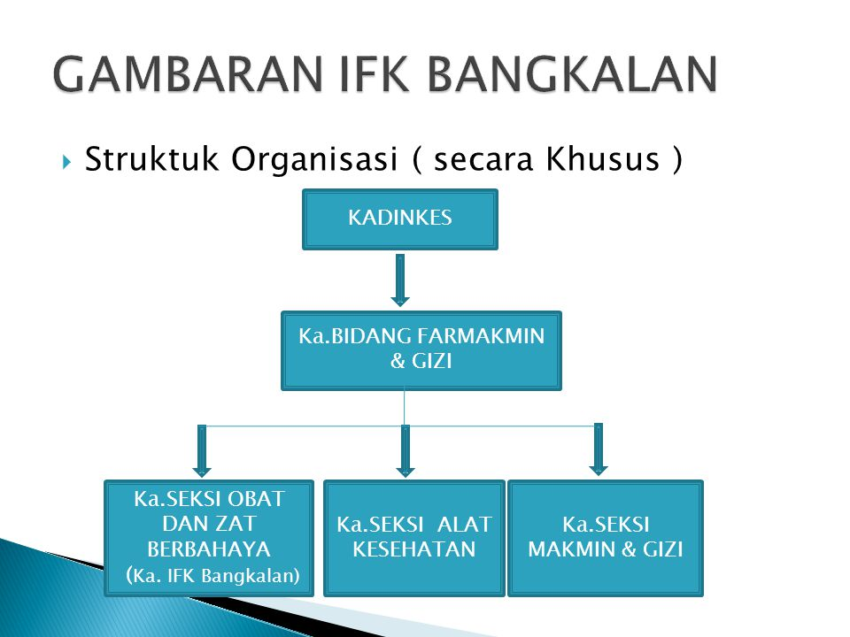  Struktuk Organisasi ( secara Khusus ) KADINKES Ka.BIDANG FARMAKMIN & GIZI Ka.SEKSI MAKMIN & GIZI Ka.SEKSI ALAT KESEHATAN Ka.SEKSI OBAT DAN ZAT BERBA