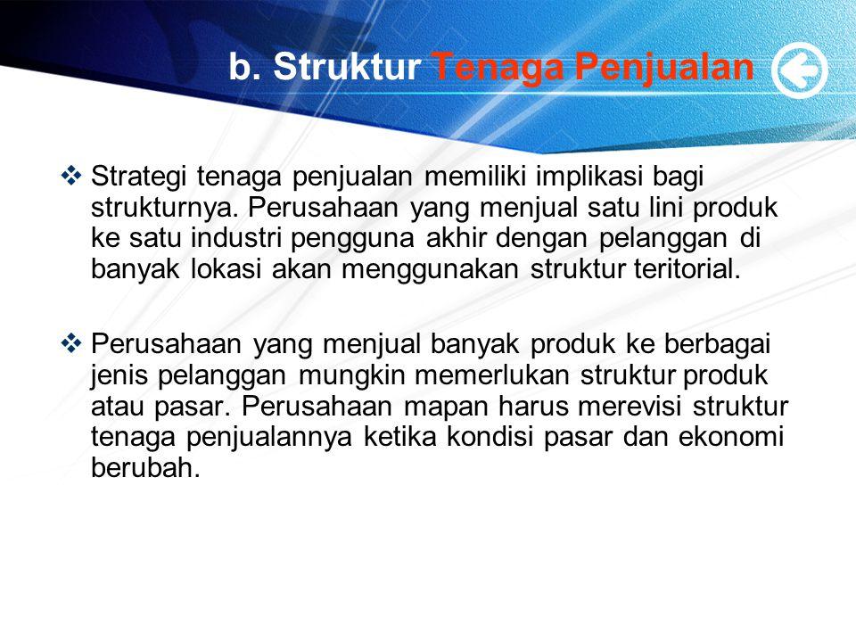 b.Struktur Tenaga Penjualan  Strategi tenaga penjualan memiliki implikasi bagi strukturnya.