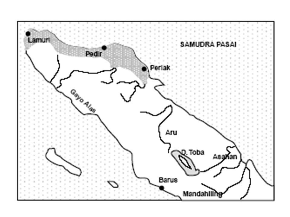 Samudera Pasai diperkirakan berdiri pada petengahan abad ke 11.