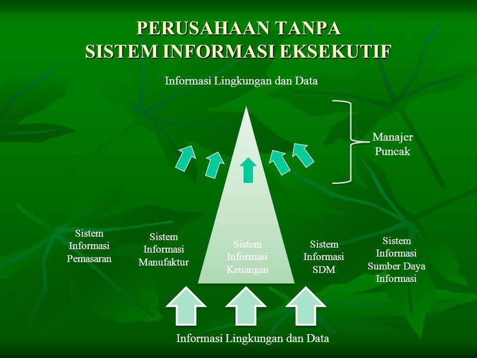 PERUSAHAAN DENGAN SISTEM INFORMASI EKSEKUTIF Informasi Lingkungan dan Data Sistem Informasi Keuangan Sistem Informasi Manufaktur Sistem Informasi Pemasaran Sistem Informasi SDM Sistem Informasi Sumber Daya Informasi Informasi Lingkungan dan Data