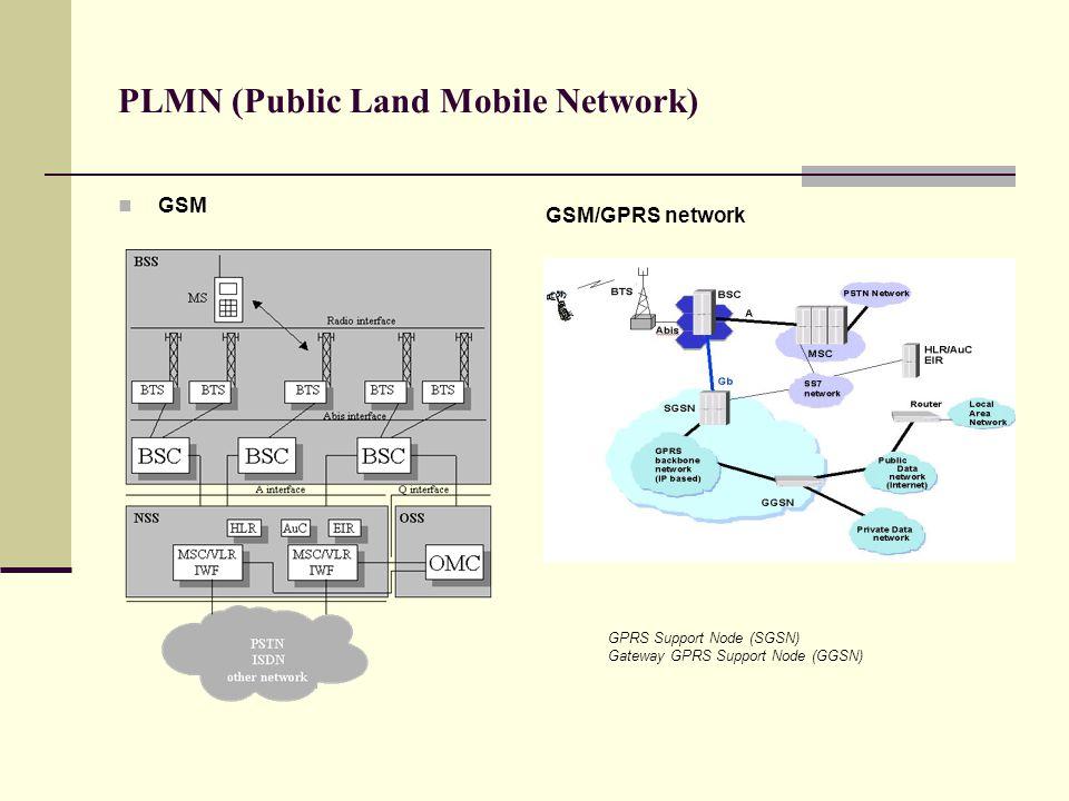 PLMN (Public Land Mobile Network)  GSM GSM/GPRS network GPRS Support Node (SGSN) Gateway GPRS Support Node (GGSN)