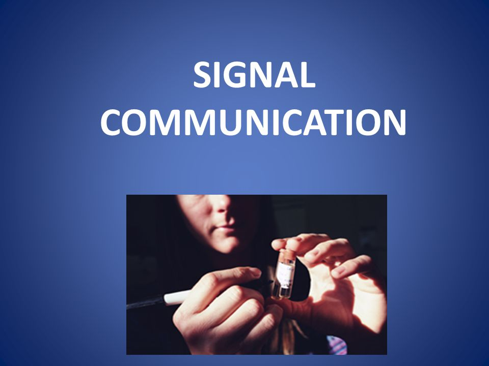 BASIC COMPETENCY : explain the notion of communication signals.