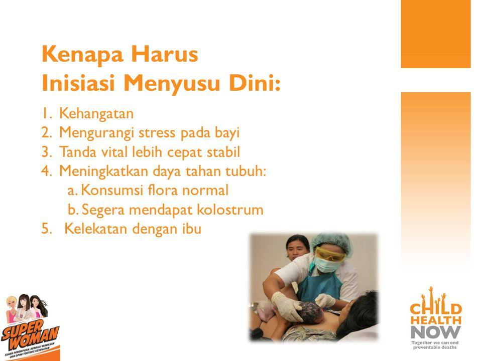 PROSES MENYUSUI DIMULAI SECEPATNYA Dengan Cara Segera setelah lahir Bayi ditengkurapkan di dada ibu sehingga KULIT IBU MELEKAT PADA KULIT BAYI ; MINIM