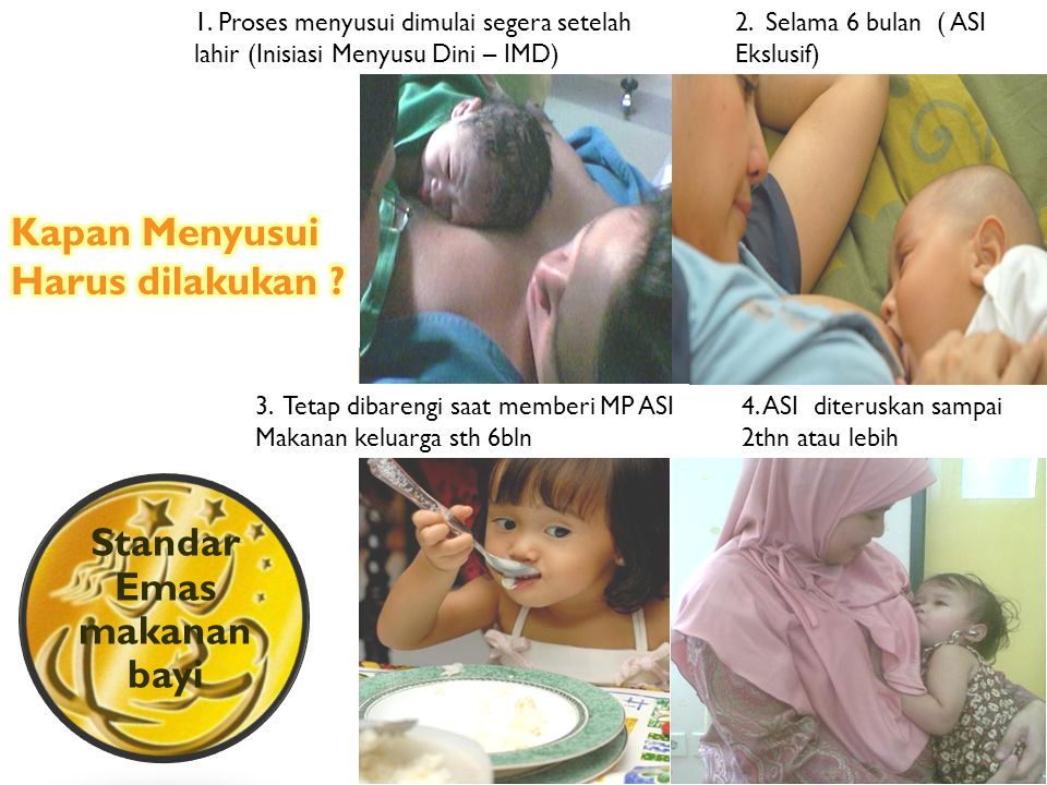 9 Standar Emas makanan bayi 2.Selama 6 bulan ( ASI Ekslusif) 3.