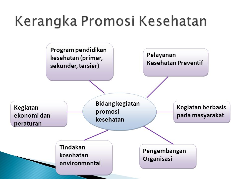 Bidang kegiatan promosi kesehatan Program pendidikan kesehatan (primer, sekunder, tersier) Tindakan kesehatan environmental Pengembangan Organisasi Ke