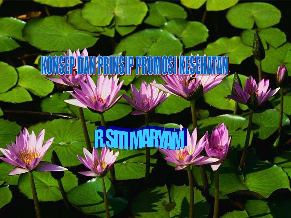 INDIKATOR PENCAPAIAN PROGRAM PROMOSI KESEHATAN R. SITI MARYAM